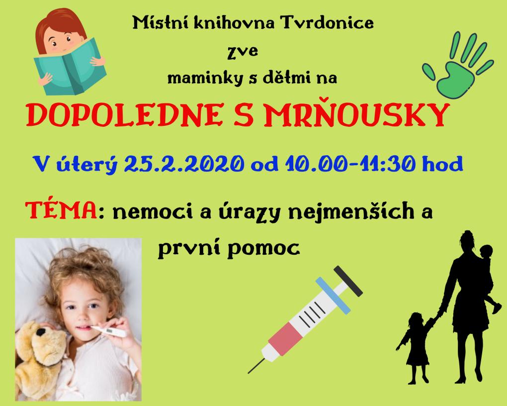 mistni_knihovna_porada1.png