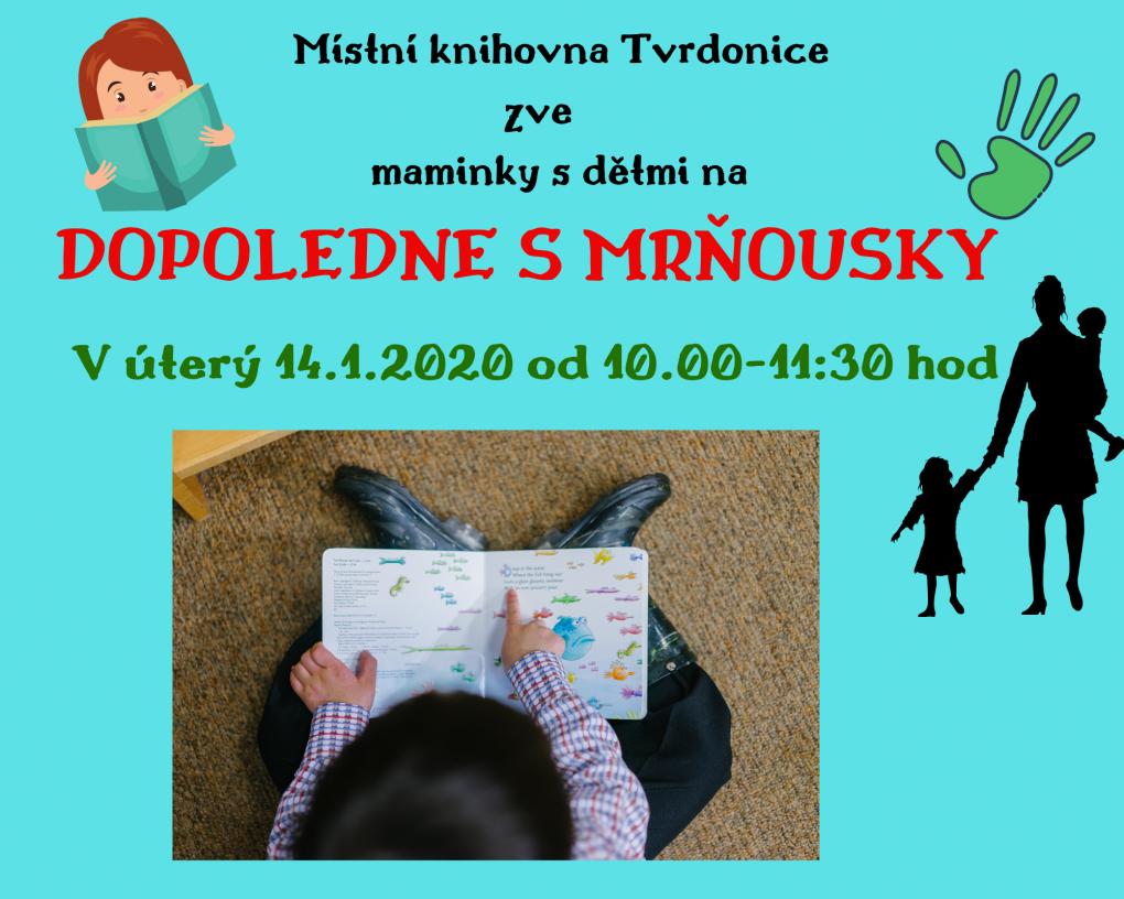 mistni_knihovna_porada_1.png